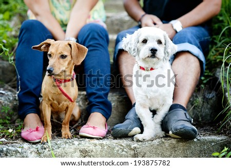 Happy young couple is walking their two dogs in green nature - stock photo