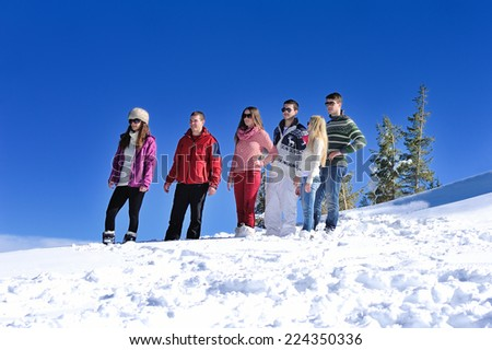 happy young people group have fun and enjoy fresh snow at beauti