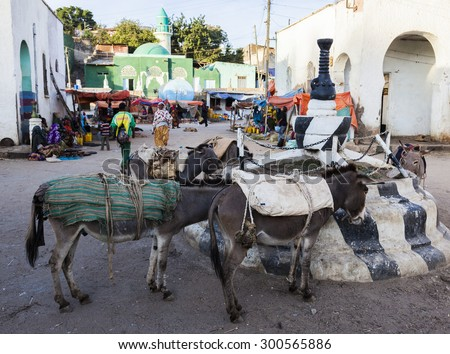 HARAR, ETHIOPIA - DECEMBER 24, 2013: Donkeys on market square of walled city of Jugol.  Ethiopian donkey population is biggest in Africa and also the second largest in the world after China. - stock photo