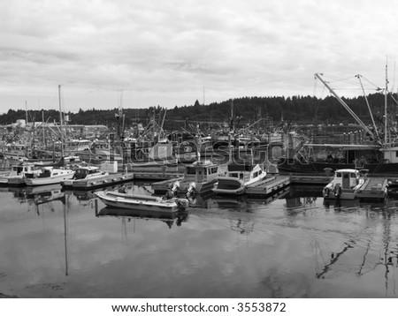Harbor on Kodiak Island - stock photo