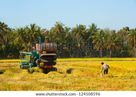 Harvest Car in the rice field - stock photo