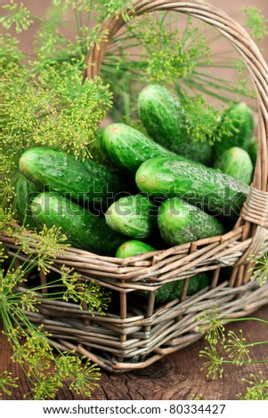 Harvest cucumbers and dill in a basket on the wooden background - stock photo