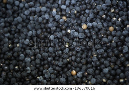 Harvest of dark fresh acai berries at farmers market in Nordeste Brazil