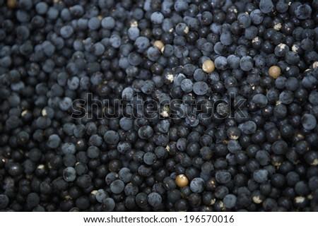 Harvest of dark fresh acai berries at farmers market in Nordeste Brazil  - stock photo