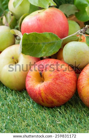 harvest of fresh garden apples on green grass, vertical, close-up - stock photo