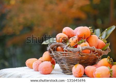 Harvest of persimmon - stock photo