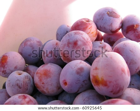 Harvest of ripe plums close-up