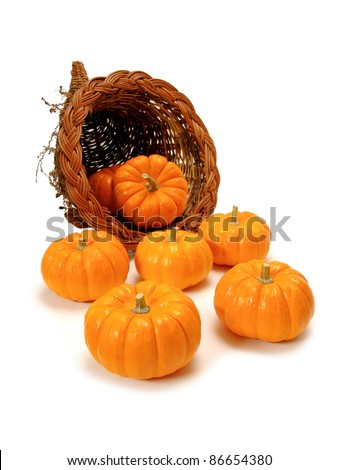 Harvest or Thanksgiving cornucopia of pumpkins on a white background - stock photo
