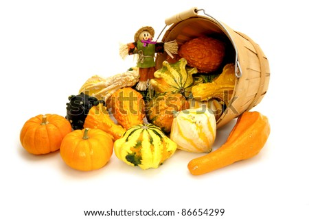 Harvest pail of spilling autumn gourds and pumpkins with scarecrow over white - stock photo