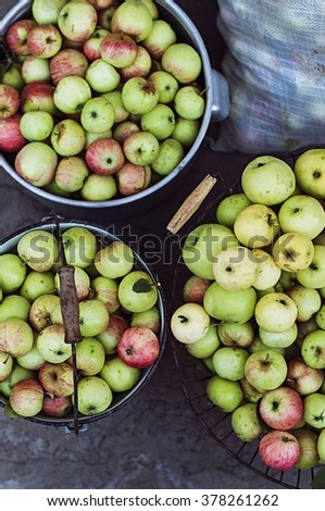 Harvest time, apples. Organic fresh apples in basket. Fresh apples in nature.  Apples in wicker basket on wooden table, closeup .Red,green and yellow apples with leaves in the basket. - stock photo