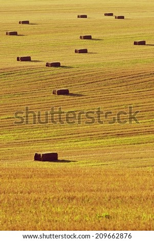 Harvested field - Hay Bales.and tractor tracks - stock photo