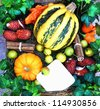 Harvested pumpkins with fall leaves and autumn fruit with a blank card attached to it - stock photo