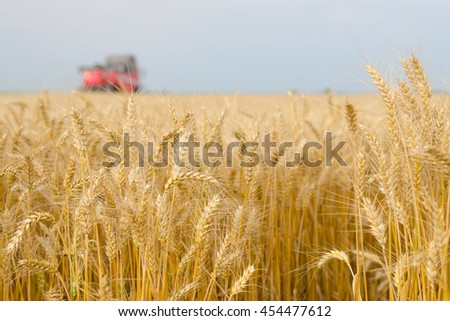 Harvester combine harvesting wheat on agricultural field on cloudy summer day. - stock photo