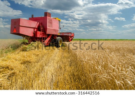 Harvester combine harvesting wheat on sunny summer day. - stock photo