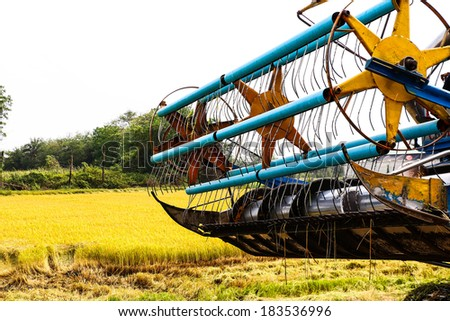 Harvester in rice field - stock photo