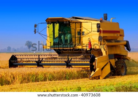Harvester tractor working a rice field - stock photo