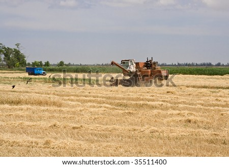 Harvester wheat field removes