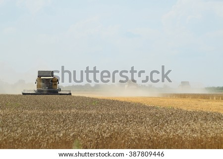 Harvesting by combines. Agricultural machinery in operation. - stock photo