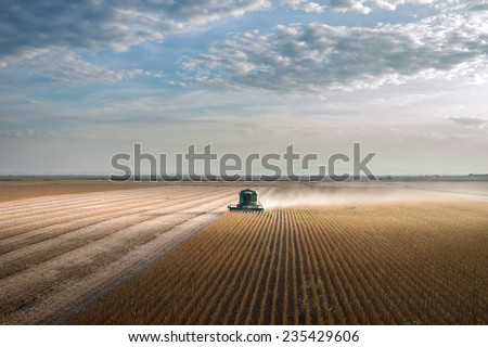 Harvesting of soy bean field with combine - stock photo