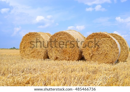 Harvesting of straw in the rural landscape