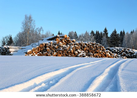 Harvesting timber logs in a forest in Russia in winter and snow-covered road - stock photo