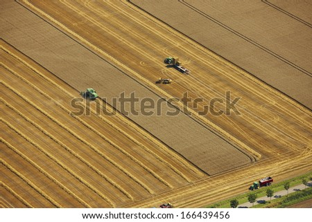 Harvesting wheat in agriculture field in the Netherlands, Europe - stock photo