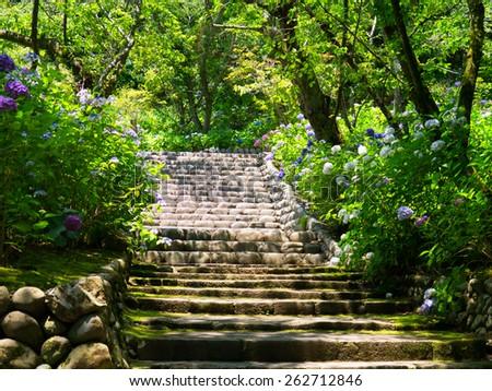 Hasedera temple  - stock photo