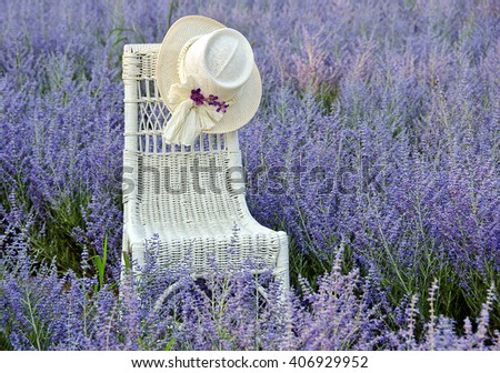 hat on wicker chair in field of Russian Sage in Michigan - stock photo