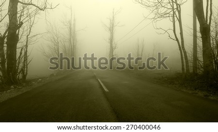 Haunted Horror Woman at the Road - stock photo