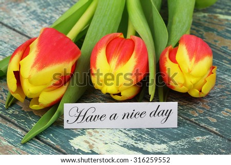 Have a nice day card with three colorful tulips on rustic surface