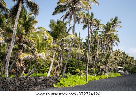 Hawaii - Big Island - Punalu'u Beach - stock photo