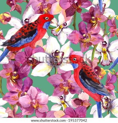 Hawaiian pattern - parrot bird, orchid flowers. Seamless template. Watercolour background. - stock photo