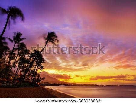 hawaiian sunset stock images royaltyfree images