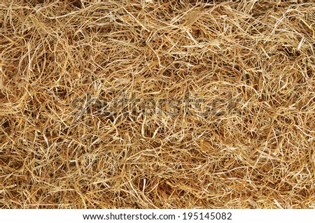 Hay background - stock photo