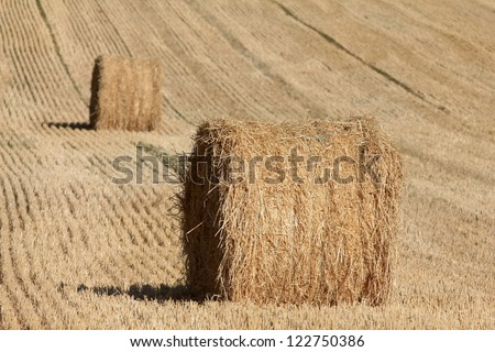 Hay Bails in France - stock photo