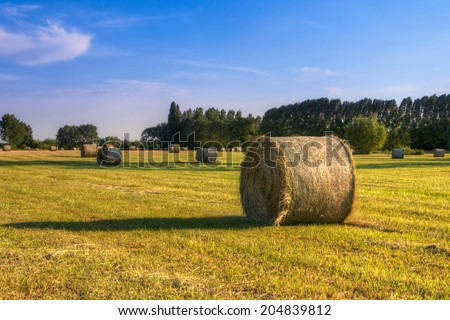 Hay bale at sunset in Hungary.This photo was created HDR - stock photo