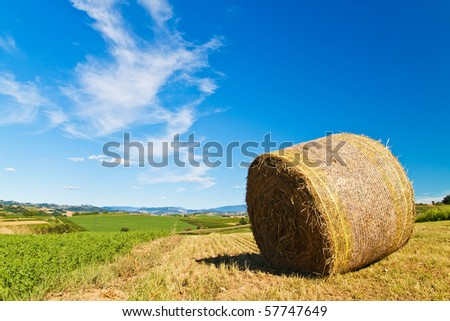 Hay bale in a beautiful sunny landscape - stock photo