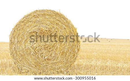 Hay bale isolated close up background with space for text. - stock photo