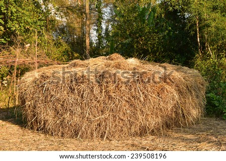 Hay bale on the ground - stock photo
