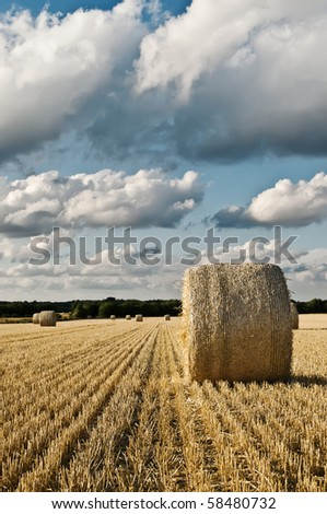 Hay bale roll on field with clouds - stock photo