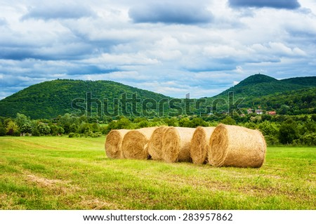 Hay bales after harvest. - stock photo