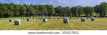 hay bales in a field on a farm