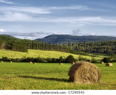 Hay bales in a field with forest and mountain in background - stock photo