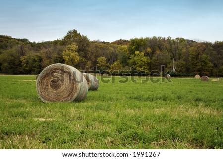 Hay bales in autumn field - stock photo