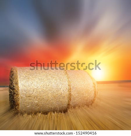 Hay bales in the foreground in rural field  - stock photo