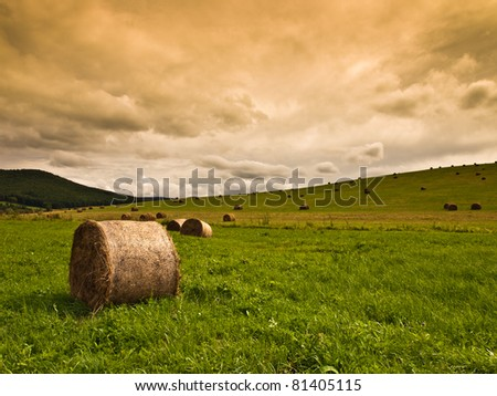 hay bales on field background - stock photo