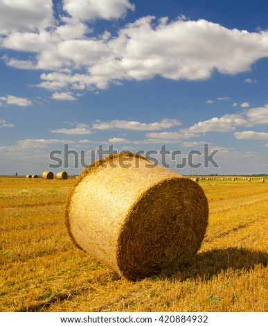 Hay bales on the agricultural field after harvest, Serbia.