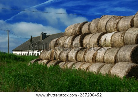 Hay bales on the field - stock photo