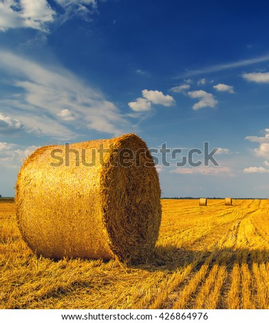 Hay bales on the field after harvest, Serbia. - stock photo