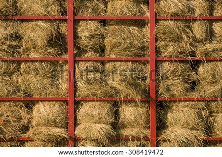 Hay bales piled within a cart with red metal bars